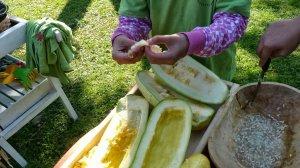 http://gyerekkertesz.cafeblog.hu/files/2013/09/P1050191-300x168.jpg